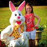 Къде жевее Великденския заек