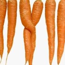 Моркови срещу рак на простатата