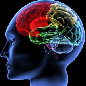 Какво представлява Множествената склероза?