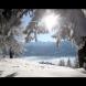 Ексклузивно!Синоптик: Зимата ще бъде топла като пролет!!! Вижте какво ще бъде времето от декември до март! Първият сняг ще падне на 2 ...