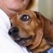 10 сигурни признака, с които кучето ви показва, че ви обича