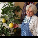 Ето как да си отгледаме лимон от семка вкъщи
