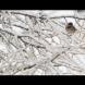 Студ с виелици нахлува в България, ще се стопли чак вижте кога!-Прогнозата по дни