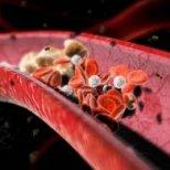 Как да намалим холестерола с природни средства