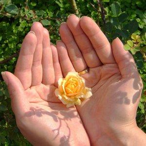 Гадаене по възлите на пръстите на ръката