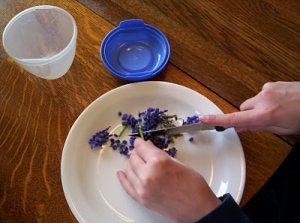 Как да си приготвим домашен парфюм