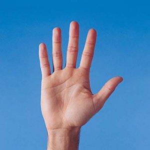 Какво казват дланите на ръцете за характера ви