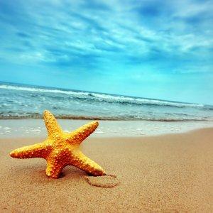 Колко полезни са пясъчните бани