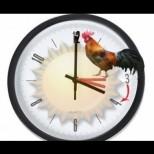 Кога преминаваме към лятно часово време и трябва да сменим часовниците си? С 1 час напред или назад е въпросът?