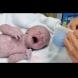 Майката забранила бабата да изкъпе бебето след раждането - Никой не е очаквал тази причина!