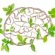 Тест, в какво здравословно състояние е умът ви