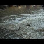 Ето тук вече се разрази страшна буря, улиците са наводнени!