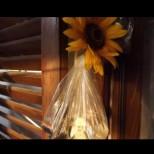 ВИДЕО: Как да се избавите от досадните мухи по изключително лесен начин!