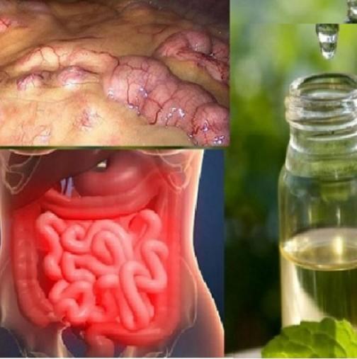 Изчистване на всички токсини от организма за ТРИ ДНИ!  Премахва мазнините и излишната вода!