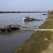 Момче на осем години преплува река Дунав!