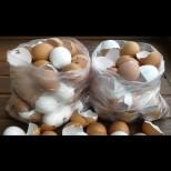 Комшийката ми събира черупки от яйца. Да, звучи смахнато, но само като надникнах в дома й, ахнах от изумление! (Снимки)