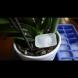 Имам си приятелка-цветарка. Веднъж пусна кубче лед в орхидеята ми - о, ужас, ще я унищожи! Но след седмица не можех да й се нагледам!