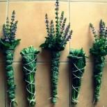 Как да си прекадим дома, като използваме билки, за да премахнем отрицателната енергия от всяко място