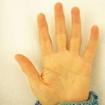 Какво значи, когато показалецът ви е по-къс от безименния пръст-Доказано е, че има значение!
