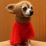 Аз съм готов за зимата, а вие? 20 смешни животни, които студът определено няма да изненада! (Снимки)