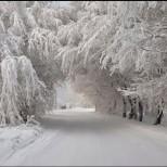 НИМХ към БАН с даде прогнозата за времето през декември: Започва се с голяма изненада!