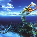 Хороскоп за 2017 зодия Риби