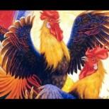 Пълен Китайски хороскоп за Годината на огнения петел-Отлична година за 4 зодии!