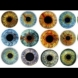 Цветът на очите ви разкрива всички здравословни проблеми, които имате. Ето на какво трябва да обърнете специално внимание