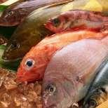 Тайни за приготвянето на вкусна риба за Никулден