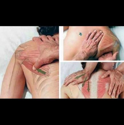 Мъжът ми златни ръце има, какъв масаж ми прави само, след като научи тази техника все едно съм при професионалист