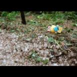Навръх Великден: Ето къде днес се изсипаха порой и градушка