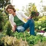 Календар на градинаря – кое кога се сади?