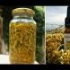 Безсмъртното растение, което расте около нас е забравена и добре скрита тайна, а маслото му струва € 1 800-Заличава бръчки, стрии