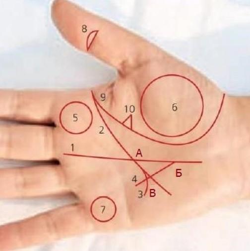 Ето как да разберете дали имате триъгълник на парите и кои са знаците на богатство на дланта ви