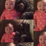 Жената чу безпомощният вик на дъщеря си. Това, което направи едно куче, тя никога няма да забрави
