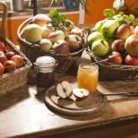 Магически дни на август: Дните, в които трябва да ядем мед и ябълки, ще бъдат щастливи! Къде да поставим босилек, за да привлечем пари!