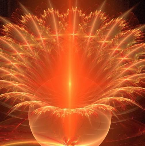 """""""Цвете на щастието"""": пожелай си и то ще се сбъдне в рамките на 2-3 дни!"""