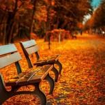 Месечен хороскоп за октомври 2017-4 зодии ще се радват на успехи в началото на есента