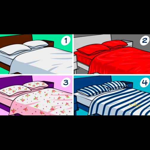 И нека разберем сега каква домакиня сте? Кое спално бельо си избирате?