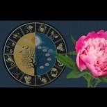 Хороскоп от щастливите растения на зодиакалния знак. Те ще ви донесат късмет!