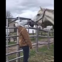 Постави маска на главата си и конят се приближи-Ето какво се случи обаче, когато свали маската!