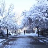 Учени от БАН обявиха шокиращи аномалии в температурите до края на месеца!