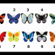 Най-силната ви женска черта показва пеперудата, която изберете, така че, бъдете внимателни