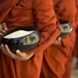Тайната рецепта на монасите от Тибет спасява от всякакви болести