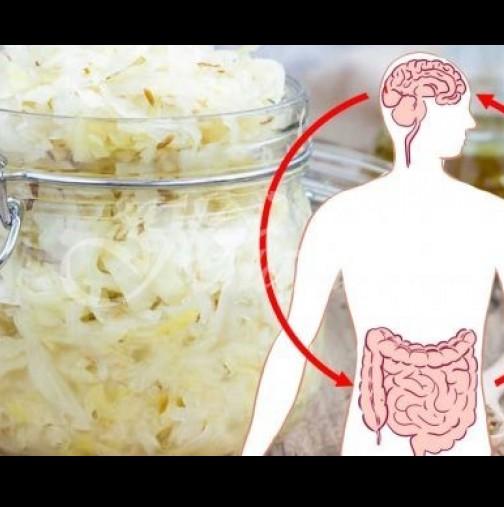 Възстановете чревната микрофлора: 3 естествени продукти с пробиотици, които ще спестят десетки заболявания