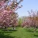 Месечна прогноза за времето през април- 33° градуса ни чакат!