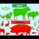 Учените решиха да разберат защо Бог е разделил животните на чисти и нечисти-Всичко, написано в Библията е истина!