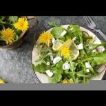 Салата от глухарчета-Рецепта за истинска пролетна салата-Бомба от витамини и полезни съставки