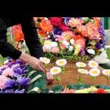 Изкуствените цветя могат да причинят рак