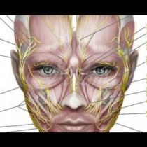 Завръщане на младостта-Защо жените от изтока са толкова младолики-10 минути на ден за подмладяване на лицето